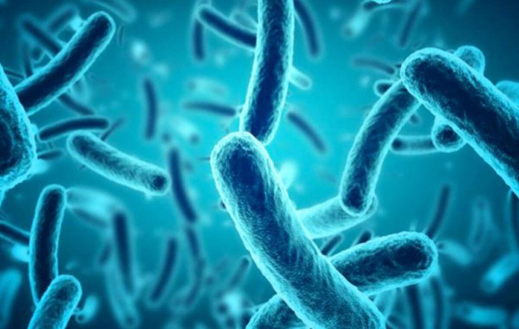 Analisi di laboratorio per il benessere intestinale Biomedic Clinic & Research