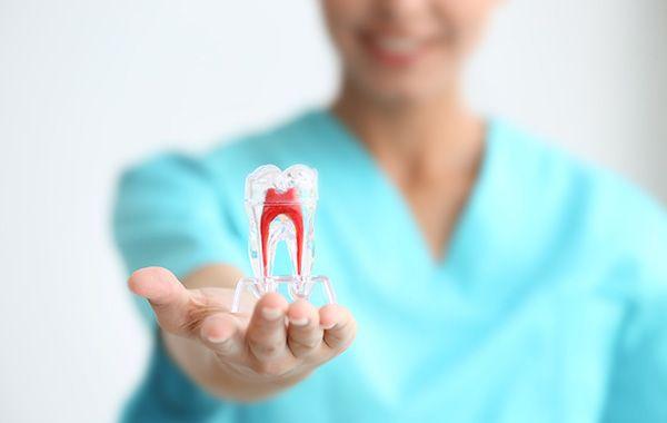 bio endodonzia - devitalizzazione solo se serve davvero