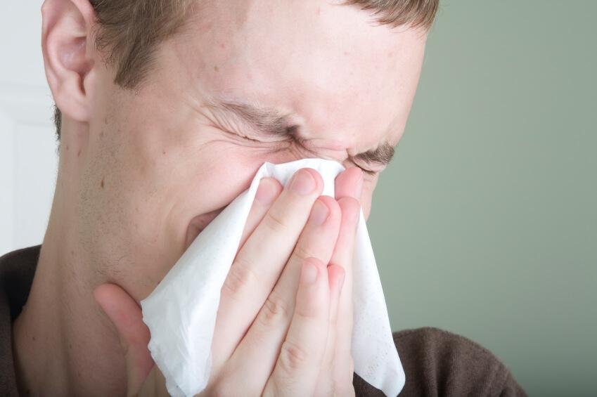 Le allergie respiratorie causano la rinite allergica